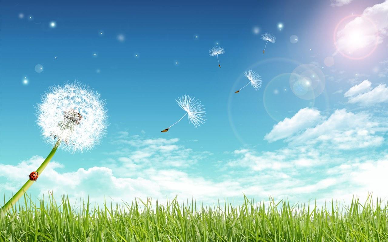 Cg design fly away dandelion under blue sky